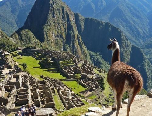 Çà vous dirait pas d'aller au Machu Picchu ?