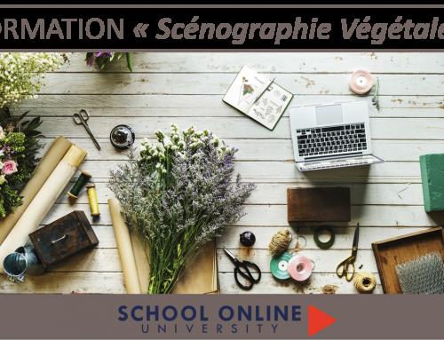 Apprendre la « Scénographie Végétale »